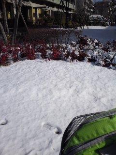 雪とか氷とか